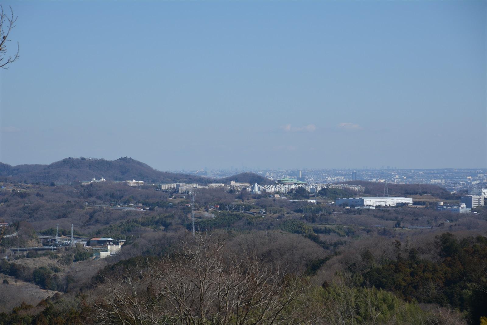 曽我丘陵から見たスカイツリー2