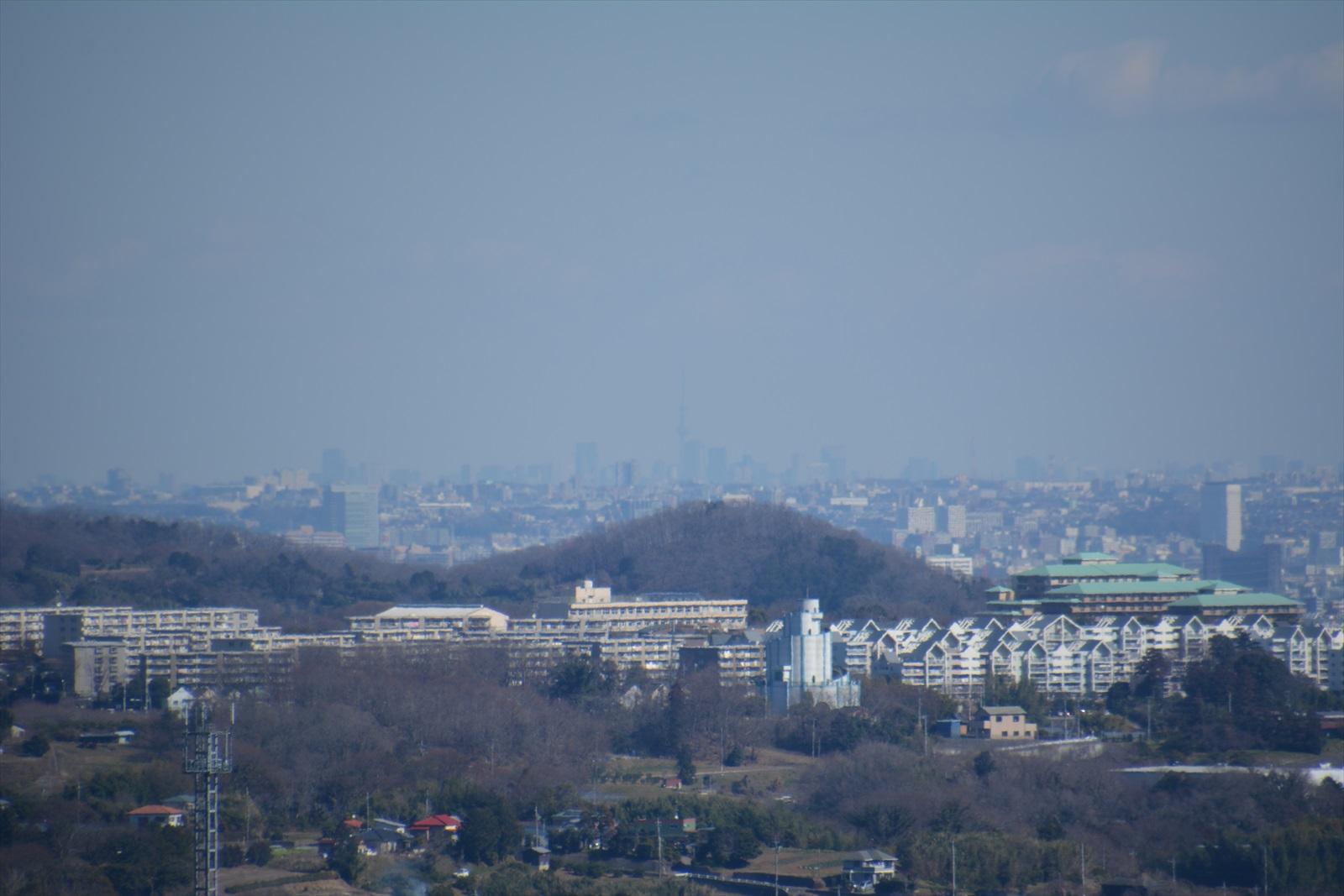 曽我丘陵から見たスカイツリー3