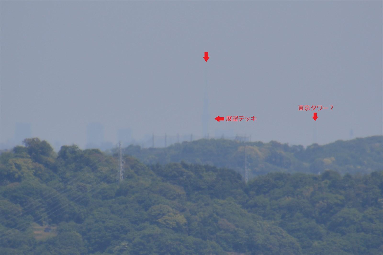 石垣山一夜城から見たスカイツリー5(更に拡大)